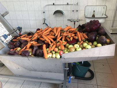 Obst-und Gemüsesaft aus Lausnitz